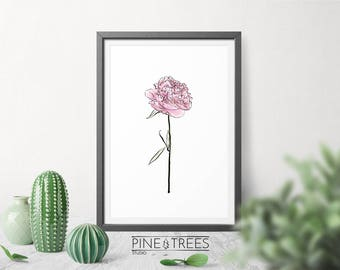 Pink Peony printable wall art for home and office - instant download you can print in any size