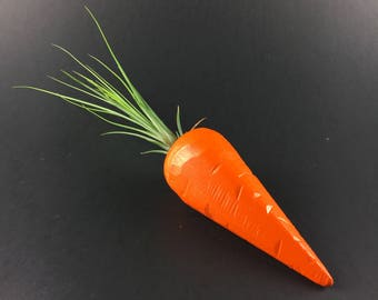Air Plant Holder - Carrot (with magnet)