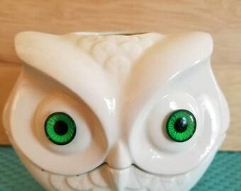 Bright eyed owl #2