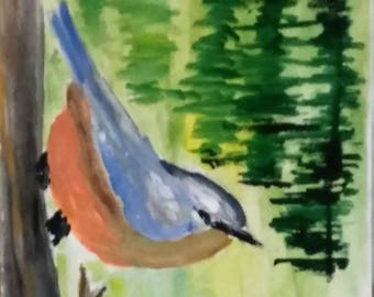 NUTHATCH ABSTRACT