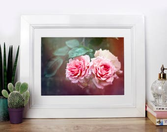 Fairytale Rose - Photography Print, Photography Print, Macro Photograph, Rose, Pink Rose, Girls Decor, Rose Photo, Still Life