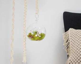 Terrarium Hanging Macrame Strong Cord Hemp Free Form Hitching Reef Knot Twisted Fiber Spun Rope