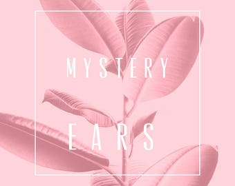 Mystery Floral Ears