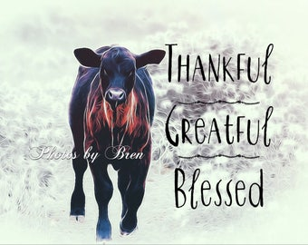 Thankful ,greatful , blessed cow art print