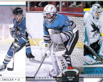 SAN JOSE SHARKS Hockey Team Lot - 125 Assorted Cards