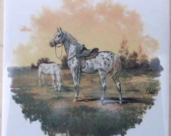 Ceramic Tile Appaloosa Appeloosa Apaloosa Saddle horse