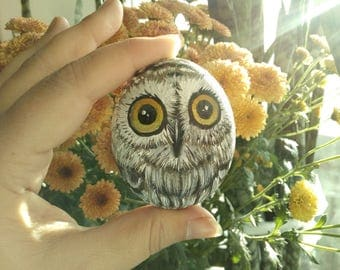 Cute little owl made from painted rock!
