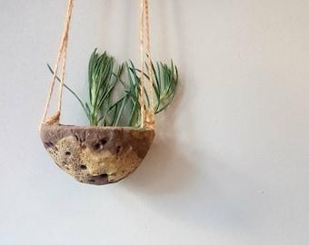 Hanging planter, hanging plant pot, plant pot, succulent pot, cactus pot, home pottery studio, home decor.