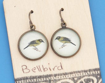 New Zealand Bellbirds, vintage art print, songbird, Earrings, glass dome art, niobium hypo-allergenic
