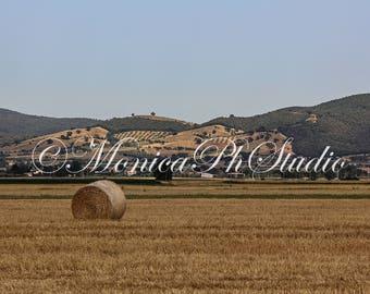 Tuscany - Maremma