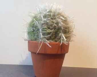 Fabulous Hand Knitted Cactus