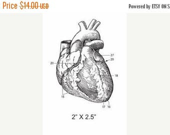 Xmas in July Anatomical Heart  Illustration Rubber Stamp