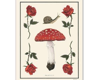 Natural Values print - Protect- Mushroom - Roses - Nature Art - Snail - Inspirational - Ryan Berkley - Wall Art - Scientific Illustration