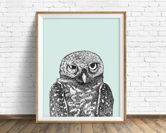 """Spotted Owl"" - wall art print"