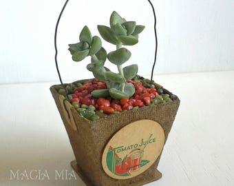 Farmhouse Peat Pot Favor Treat Mini Basket, Candy Container, Succulent Seedling Plant Gift, Farm Tomato Dairy Milk Bottle Cap