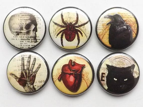 Fridge Magnet Set refrigerator Macabre Goth Horror skull anatomical heart black cat halloween party favor stocking stuffer button pins gift