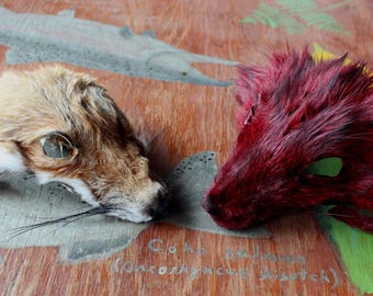 Pair of shaped fox faces for crafts, taxidermy practice, display, more DESTASH