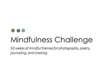 Mindfulness Challenge 2017 Instant Download PDF