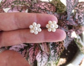 Pearl Flower Earrings Cluster 14K Gold Studs Post Clutch Estate Jewelry NOS