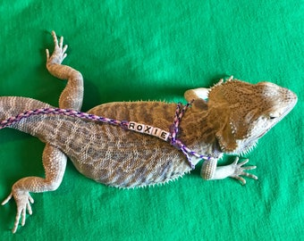 "Personalized ""Aloha"" Colored Bearded Dragon Leash *Small Beads*"