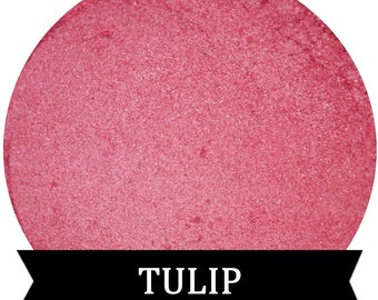 Pink Eyeshadow TULIP Spring Shadow