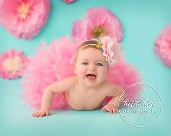 Baby Girls Birthday Tutu Dress Outfit   Posh Party Princess Birthday Tutu   Baby Tutu Skirt   Strawberrie Rose Tutus