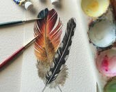 Rainbow feather, spotted feather - original watercolour