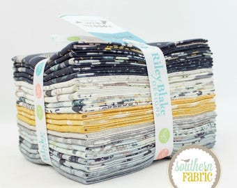 "Fossil Rim - Fat Quarter Bundle - 21 (18""x21) by Deena Rutter by Riley Blake (FQ-6610-21)"