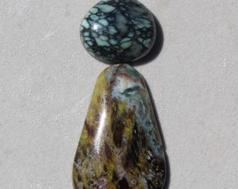 Collawood petrified wood cabochon and or New Lander turquoise cabochon -  very rare top shelf cabochons