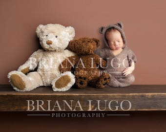 Digital newborn  bear shelf prop