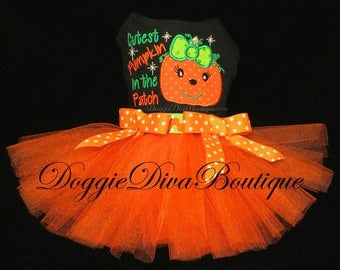 Dog Dress - Dog Tutu Dress - Cutest Pumpkin in the Patch - Small or Medium