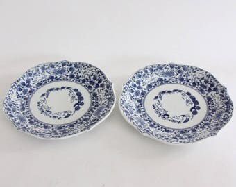 Vintage Set of Two Blue and White Plates