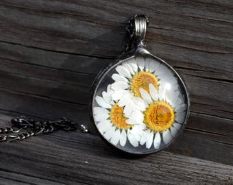Real Daisy Necklace, Flower Power Flower Jewelry, Dry Pressed Daisies, Large Daisy Necklace, Long Chain, Real Flower Jewelry, Statement 2784