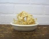 """Vintage Ironstone Enwood China Trenton NJ 5"""" Small Oval Soap Dish Bowl"""