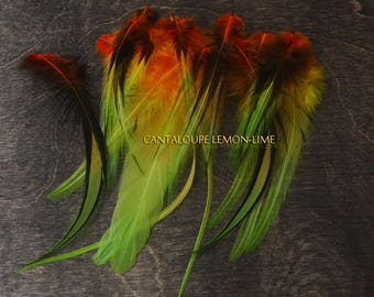 Craft Feathers Cantaloupe Lemon Lime Colored Real Rooster Feathers for Crafts Jamaican Colors Tropical Bright Colorful Plumes, 20 PACK