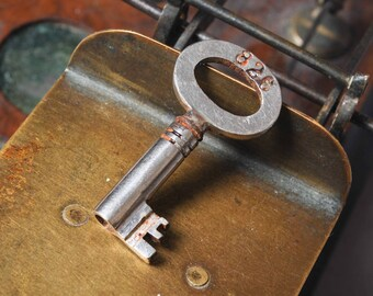 Antique rusty iron skeleton key. old patina