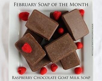Raspberry Chocolate Goat Milk Cold Processed Soap