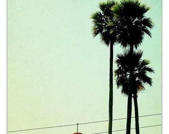 photography, mid century carnival, art,  orange mustard, honey gold, mad men, summer, Boardwalk Palms, 24x16 photograph