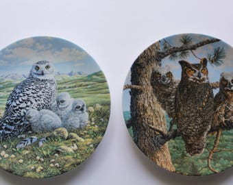 Vintage Knowles Set of Great Horned Owl and Snowy Owl Collectible Plates 1990s