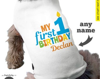 Dog Birthday Shirt - Personalized dog 1st birthday shirt