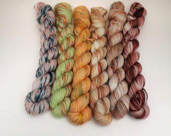 Set of 6 Variegated Minis, 20 Grams 92 yards each, Work Horse Sock, Super Wash Merino Wool, Nylon, Groovy