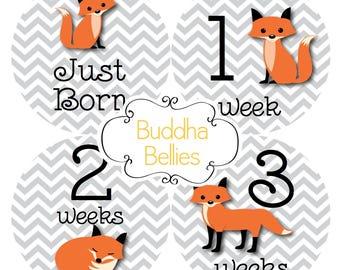 FREE NEWBORN SET Fox Baby Month Stickers Monthly Baby Stickers Fox Baby Shower Gift Red Fox Month to Month Baby Sticker Milestone Photo Prop