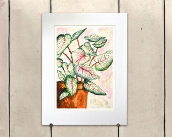 """Coleus Plant Giclee Print 14x11"""" 100% of the profits go directly to artists with disabilities Item 205 Rob N."""