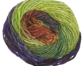 Noro Silk Garden Shade 403 50g