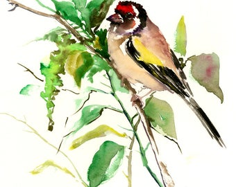 Bird Artwork, European Goldfinch