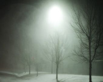 Black and white photo of a snowy night in the park with tree and moonlight