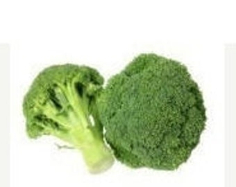 Green Sprouting Broccoli Calabrese 100 Seeds Quality Vegetable  Heirloom natural non gmo 60 Days Slow to Bolt Flavorful Short Season