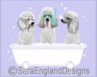 Spa Day - Poodle-White-Sport