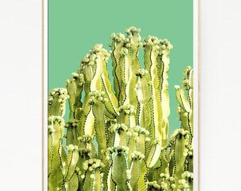Printable Cactus Print Poster Wall Tropical Retro Vintage Colour Photo Nature Minimalist West Color Sun Leaf Succulents Green Desert 1018