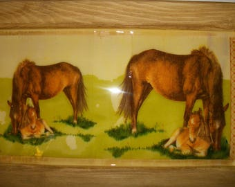 """Large frame pattern """"Mare and her cub"""""""